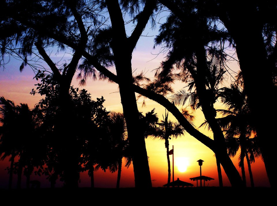 Weekly Photo Challenge : Silhouette | Sunset and Shadows