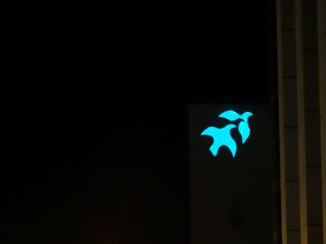 that bird logo