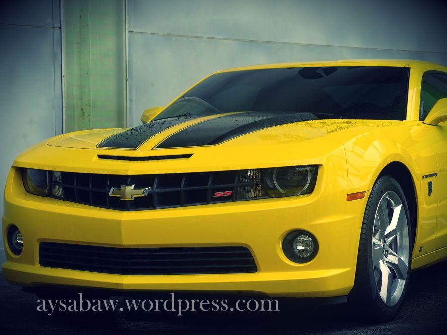 Bumble bee car