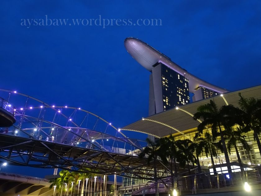 Marina Bay at Night 2