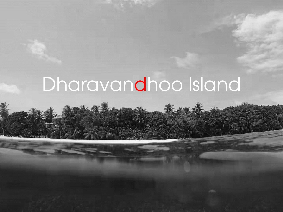 3 Things I Like About Dharavandhoo Island