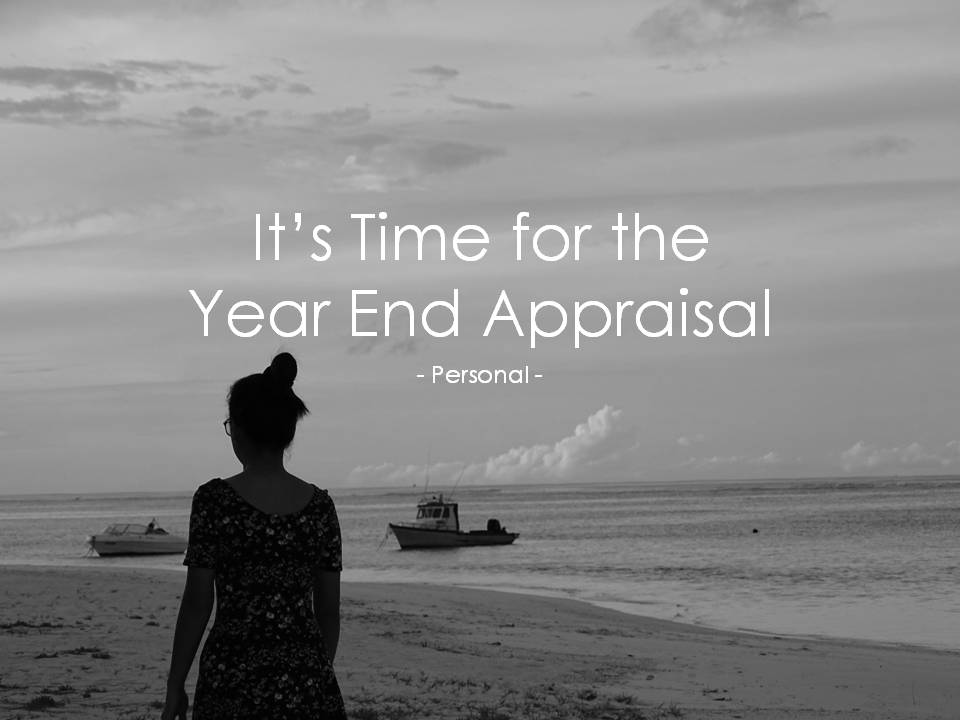 It's Time for the Year End Appraisal