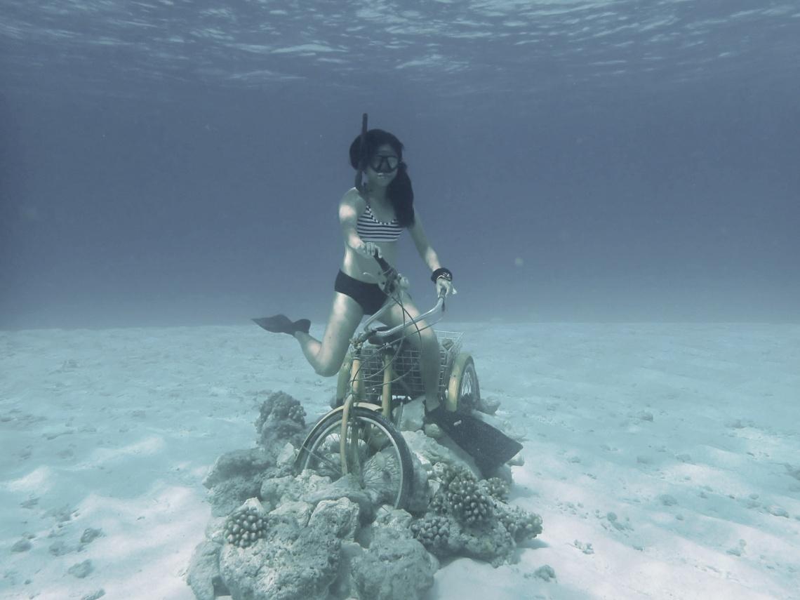 Fushifaru Maldives Free dive